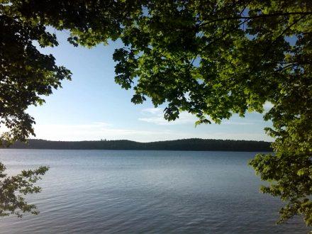 Widok na taflę jeziora